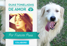 Projeto social Francine Piaia
